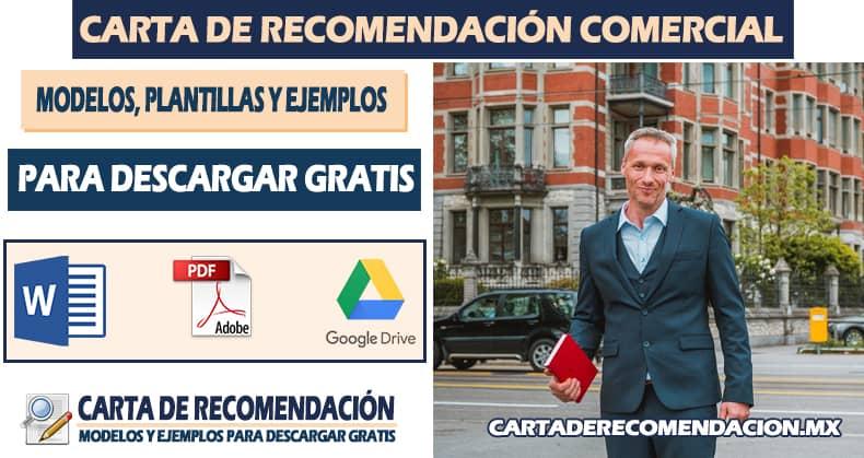 carta de recomendacion empresarial